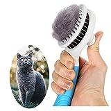 Katzenbürste, Katzenburste Selbstreinigend Zupfbürste Entfernt Unterwolle Hundebürste Hundebürste Katzenbürste Kurz bis Langhaar Geeignet Sanfte Katzenbürste Zupfbürste- (blau)