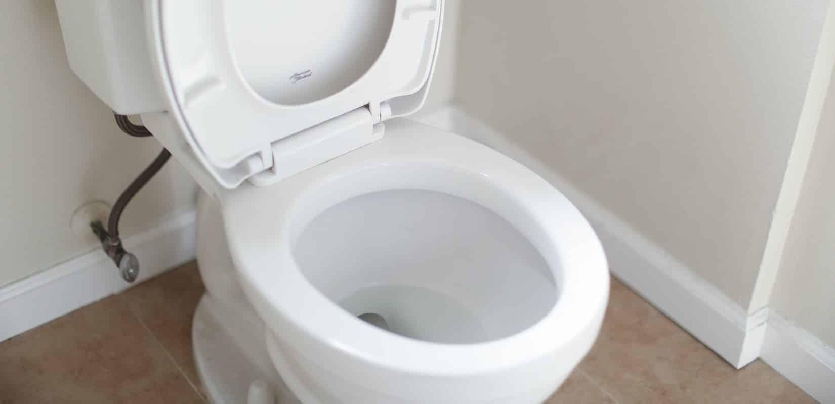 Toilette reinigen Anleitung