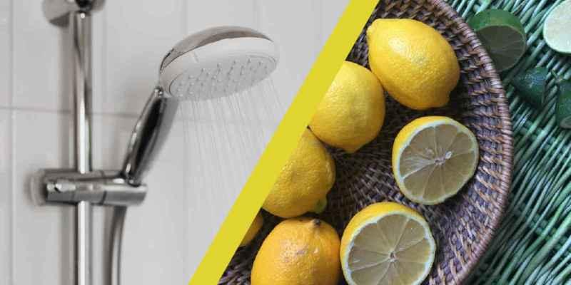 duschkopf-entkalken mit zitronensäure