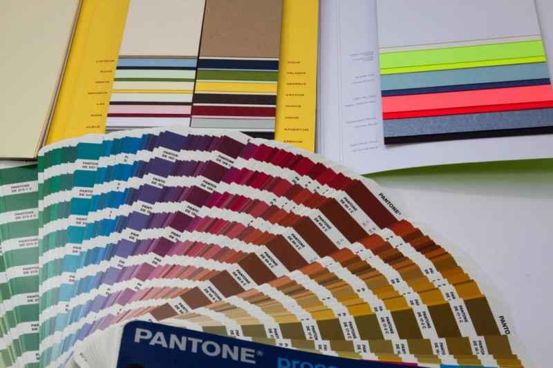 Plissees in Trendfarben: Wir klären auf!