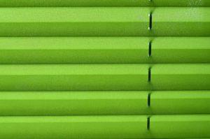 Grünes Plissee